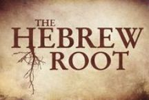 The Hebrew Root Video Series / Short teachings focused on examining a specific word from a Hebraic perspective.