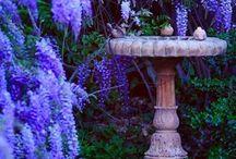 Garden, Balkon