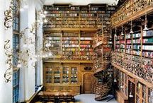 Dreamy: Libraries / Dreaming of the massive personal library...