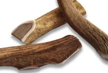 Antler Chews for Dogs / by Basis Pet, LLC
