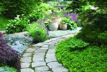 garden/ záhrady a terasy