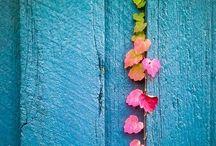 _colours