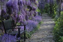 Jardines / Gardens / Espacios e ideas para tu hogar
