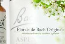 Cura pela Natureza / Florais . Cura pela Natureza . Chá e Ervas Medicinais Plantas que Curam , Homeopatia