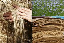 lino/ linen/flax / todo relacionado con el lino, su planta, su cosecha, tejidos y mucho mas