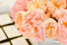 Floral / by Simran