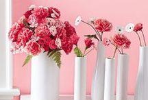 Springtime Inspiration / Get your home ready for the fresh air.
