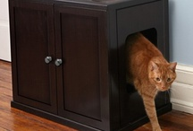 Creative Cat Litter Box Ideas / Modern cat litter box spaces and furniture.