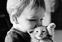 Cats are Family