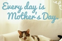 Celebrate Cat Moms! / In honor of Mother's Day, we're recognizing Cat Moms who care for their four-legged children. Celebrate with us and share these images with your feline-loving friends!