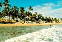 Brazil | South America / Brazilië is het land waar je Rio de Janeiro vindt, bijzondere natuurgebieden als de Amazone of Pantanal, fijne stranden en natuurlijk is het het land van de carnaval. Hier vind je de mooiste reisfoto's van dit Zuid Amerikaanse land. Informatie kun je lezen op www.wearetravellers.nl/zuidamerika/brazilie