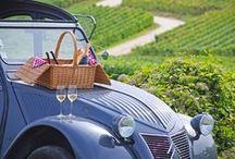 Paysages viticoles