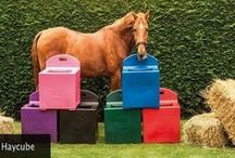 Unique Equestrian Products available at JSW / Equestrian, Horseboxes, Show Jumps for horses, opening gate for RDA, Training aids for horses, horse trailers or floats,