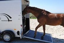Horse Trailers - horse transport by JSW Horseboxes / Take a tour of the horse trailers we sell - We carry a great selection of stock, so feel free to come and see us, talk to us about your requirements and we shall help you every step of the way.      Always research for the type of trailer you require, ensure you have the correct towing vehicle to start with, that you will be towing legally and not illegally!     We have years of experience in the field of horse transportation and are always happy to help!
