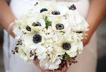 Winter wedding flowers / ideas and inspiration for seasonal winter wedding flowers