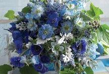 Wedding Colours: Blues and whites