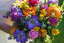 Wedding colours: bright and bold