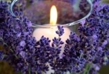 Wedding flowers: Lavender / Inspiration for including lovely lavender in your wedding flowers