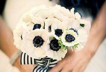 Wedding flowers: Anemones / Anemones are the quintessential winter bloom