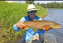 Fly Fishing Tips, Tricks, News and More! / Our curated list of the most popular fly fishing blog posts from the Orvis fly-fishing blog, featuring top-notch articles, tips, photos, videos, podcasts and the latest fly-fishing news. From trout fishing in the famed rivers of Montana to brown-lining for carp in the urban jungle to chasing sailfish of the coast of Baja, we cover all sides of the sport we love. / by Orvis