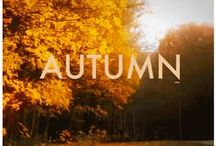 Autumn / Everything Fall. Orange, pumpkin everything, scarfs, and trees changing colors!