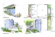 Sketches gardens