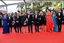 Cannes 2014 - Red Carpet - Pierre Angenieux ExcelLens in Cinematography - Vilmos Zsigmond