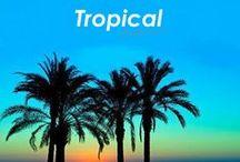 Tendencia Tropical / Los colores verde, amarillo y azul, las palmeras, los paisajes exóticos y algunas aves del paraíso nos inspiran a transformar los espacios en Paraísos Terrenales. ¡Bienvenidos al Trópico!  / by Blank Estudio