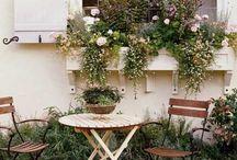 EXTERIOR DÉCOR / Future Garden inspo