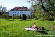 Picnic time / Piknikit ja kesä kuuluvat yhteen!