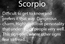 I LOVE being a Scorpio / by Laura Padilla-Zepeda