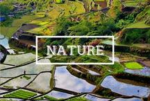 / NATURE / A board about beautilful nature photography, stunning landscapes and breathtaking sceneries from all over the world. #travel #photography