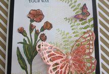 Basic Buttefly cards / Butterflies