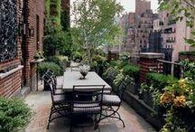 Zahrady na střeše / Roof top gardens