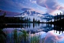 ~ Landscapes ~