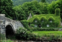 ~ English cottages ~