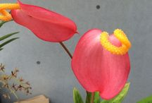 BOTANICA / FLOWER,POTTED PLANT