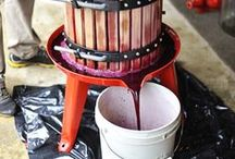 Winemaking / Tips, techniques and recipes