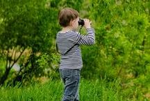 Nature Study / Tips, Ideas, Activities, & Resources to help you have a successful nature study in your homeschool.