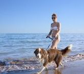Dog Beach & Camping / Dog Camp Union Lido: the first 5 star campsite in Italy with beach and pool for dogs!