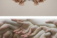 Pointless / by Carol Ehrendreich