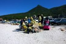 Sustainability, beach cleanups and environmental awareness / The environmental days we celebrate at the Two Oceans Aquarium