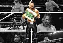 Seth Rollins - WWE Universe
