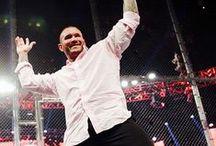 Randy Orton - WWE Universe