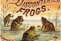 kikkers / frogs / Frosche / grenouilles / images of frogs and frog related (art) objects, toads and tortoises