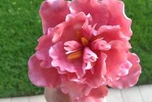 Dolcissimi fiori / Ispirazioni e idee per la creazione di fiori con la pasta di zucchero. Strumenti e idee per realizzarli su www.decorazionidolci.it