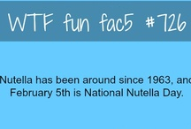 WTF Facts ☆ミ(o*・ω・)ノ / WTF fun facts:  Feeding your brain with random facts to make you feel one up smarter than the rest of us.  / by Sophia Tong⛅