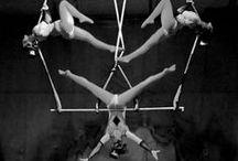 High Flying Circus. / Aerial Circus Silks | Trapeze | Lyra | Straps | Corde Lisse    / by Freya Pellie