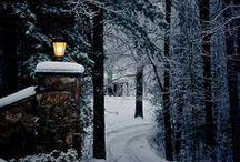 Winter / Winter | White | Snow | Hiver