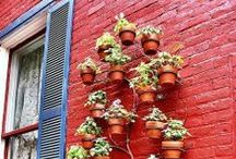 Vertical Gardening / Vertical Gardening is a great way to maximize small space gardens or add visual appeal to any garden. They can work as privacy walls, as herb gardens, vegetable gardens and so much more!